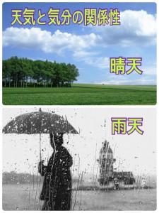 晴天と雨天