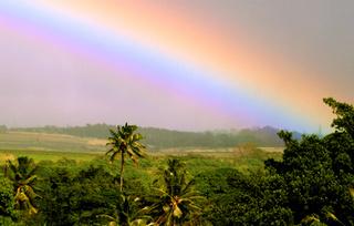 ハワイの虹.jpg